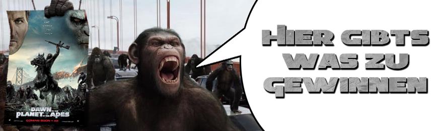 Affen Gewinnspiel banner