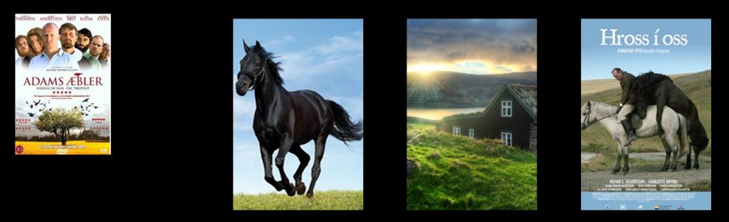 moviequation pferde