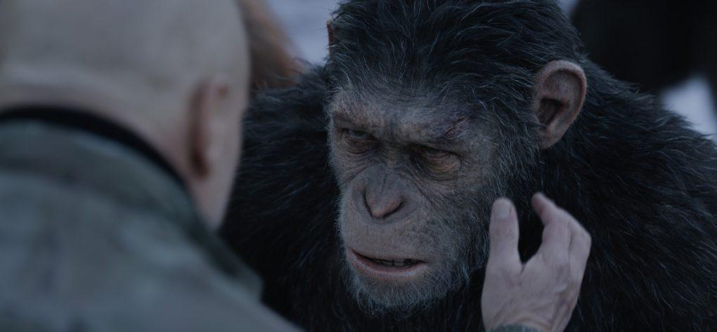 Planet der Affen: Survival | Flip the Truck | Caesar und Colonel